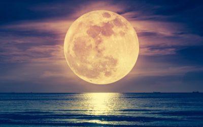 Tadejev Lunin krog (6. 7. – 12. 7. 2020)